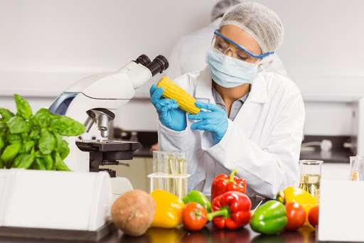 master_qualite_agroalimentaire
